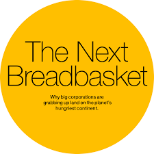 Next by The Next Breadbasket National Geographic