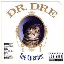 cat photo album dr dre the chronic the kitten covers