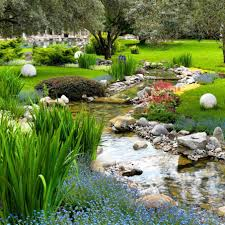 backyard pond design with grass and flowers also trees exterior