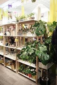 idee deco bar 115 best vegetale images on pinterest plants flowers and gardening