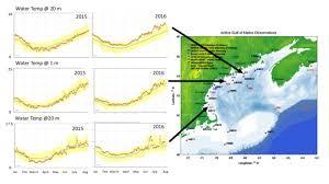 Cape Cod Water Temp - the gulf of maine coastal ecosystem survey