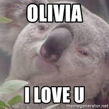 Meme Generator Koala - koala bears surprised koala meme generator kinked