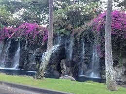 driveway waterfall to the grand wailea hotel where we stayed