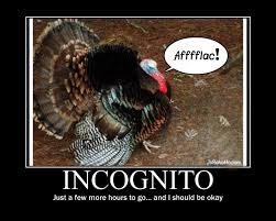 Thanksgiving Funny Meme - aflac turkey incognito funny thanksgiving pic cartoon holidays