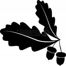 unique oak tree vector free download acornl style images