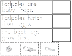 a child u0027s place frog trace and paste worksheets