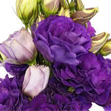 Designer Flower Delivery Of Purple Designer Lisianthus Flower For June To September Delivery