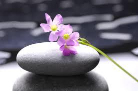 imagenes zen gratis meditation zen music relaxation music chakra relaxing music for