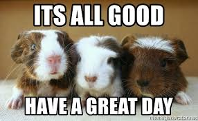 Have A Great Day Meme - its all good have a great day guinea pigs meme generator