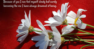 Wallpaper With Flowers Beautiful Flowers Wallpapers With Quotes On Wallpaperget Com
