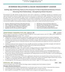 download sample executive resume haadyaooverbayresort com