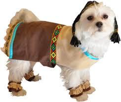 Halloween Costumes Puppies Halloween Costumes Pets Huffpost