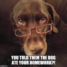 Dog With Glasses Meme - the dog ate your homework imgflip