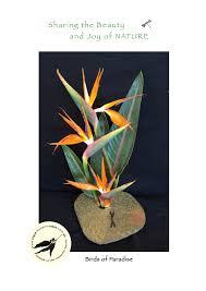 Ikebana Vase Ikebana Vases