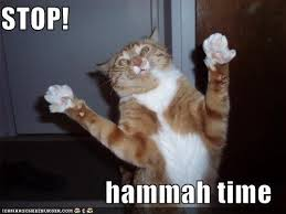 Hammer Time Meme - stop mc hammer time lolcat obama pacman