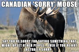 Moose Meme - canadian sorry moose meme on imgur