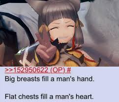 Big Breast Memes - i couldn t have said it better myself xenoblade chronicles