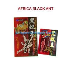 obat kuat terbaik afrika black ant semut hitam