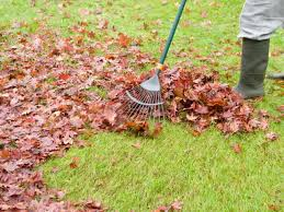 how to compost fallen leaves how tos diy