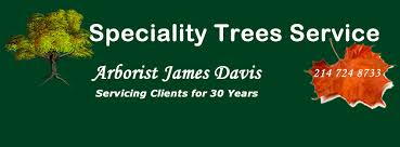 specialty trees service 4 photos landscape company 3202