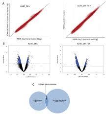 5 azacytidine enhances efficacy of multiple chemotherapy drugs in