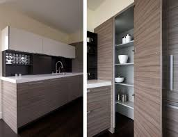 Modern Kitchen Pantry Designs - contemporary corner kitchen pantry w renovation pinterest