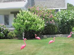 gardening and gardens pink flamingo lawn ornaments