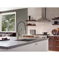 Kitchen Faucet Consumer Reviews 100 Articulated Kitchen Faucet Kitchen Sink Faucets Kitchen