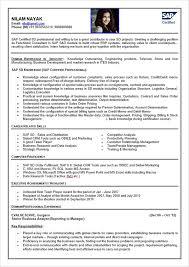10 accounting resume templates free word pdf sles