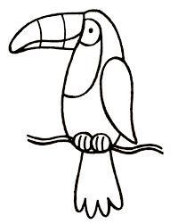 toucan coloring page surprising brmcdigitaldownloads com