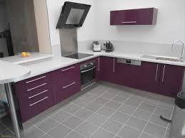 meuble cuisine aubergine couleur aubergine cuisine