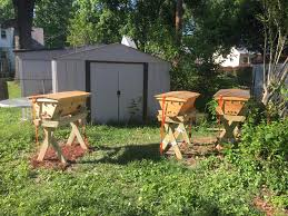 top bar hives beekeeping