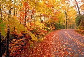 12 reasons love fall season