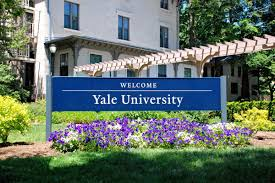 Sample Resume Yale Law by Application Process Yale Jackson Institute For Global Affairs