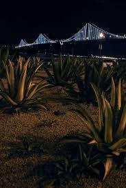 Bay Bridge Lights Bay Lights Set To Shine Once Again Sfgate
