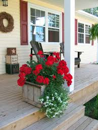 Front Porch Planter Ideas by Best 25 Red Geraniums Ideas On Pinterest Geraniums Red Flowers