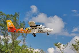 bird island belize rental bird island seychelles travel information the inner islands