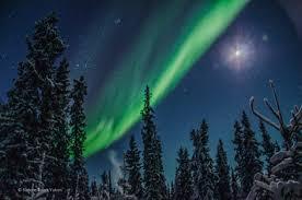 aurora borealis northern lights tours yukon aurora borealis in winter wonderland yukon canada nature tours