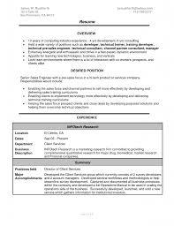 sales resume summary examples sales resume summary it sales resume senior sales executive resume sales associate car for sale signs printable ipnodns ru