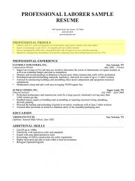 How To Write A Profile For A Resume Profile Resume Examples Examples Of A Resume Profile Template