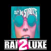 Could Have Been Me Five Blind Boys تحميل أغنية The Struts Could Have Been Me Lyrics U2013 Rai2luxe Info