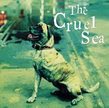 dog photo album the cruel sea three legged dog cd album at discogs