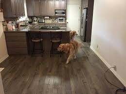 Best Laminate Wood Flooring For Dogs Parkerpup Com A New Dog Friendly Kitchen