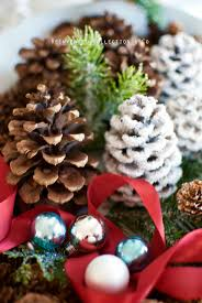 Holiday Craft Frosted Pinecones Giveaway Pinterest