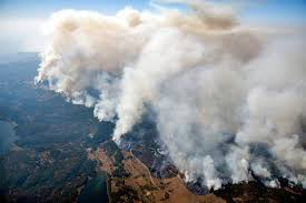 California Wildfires Pets by Wildfires Leave Chimneys Charred Appliances In Their Wake The