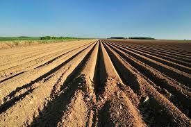 l apprentissage agricole dans les hauts de version longue notre stratégie pour l agriculture des hauts de région