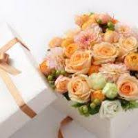send cheap flowers send cheap flowers flowers ideas for review