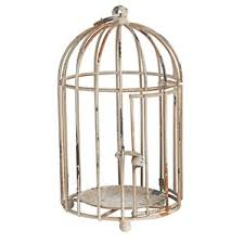 Birdcage Decor For Sale Decorative Bird Houses U0026 Cages You U0027ll Love Wayfair