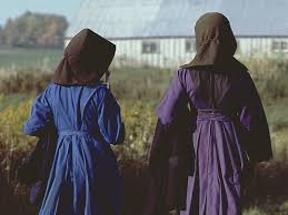 delila miller and fannie miller search for amish girls ends with
