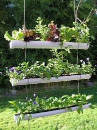 House Gardens Ideas Backyard Small Home Garden Ideas Garden Trends